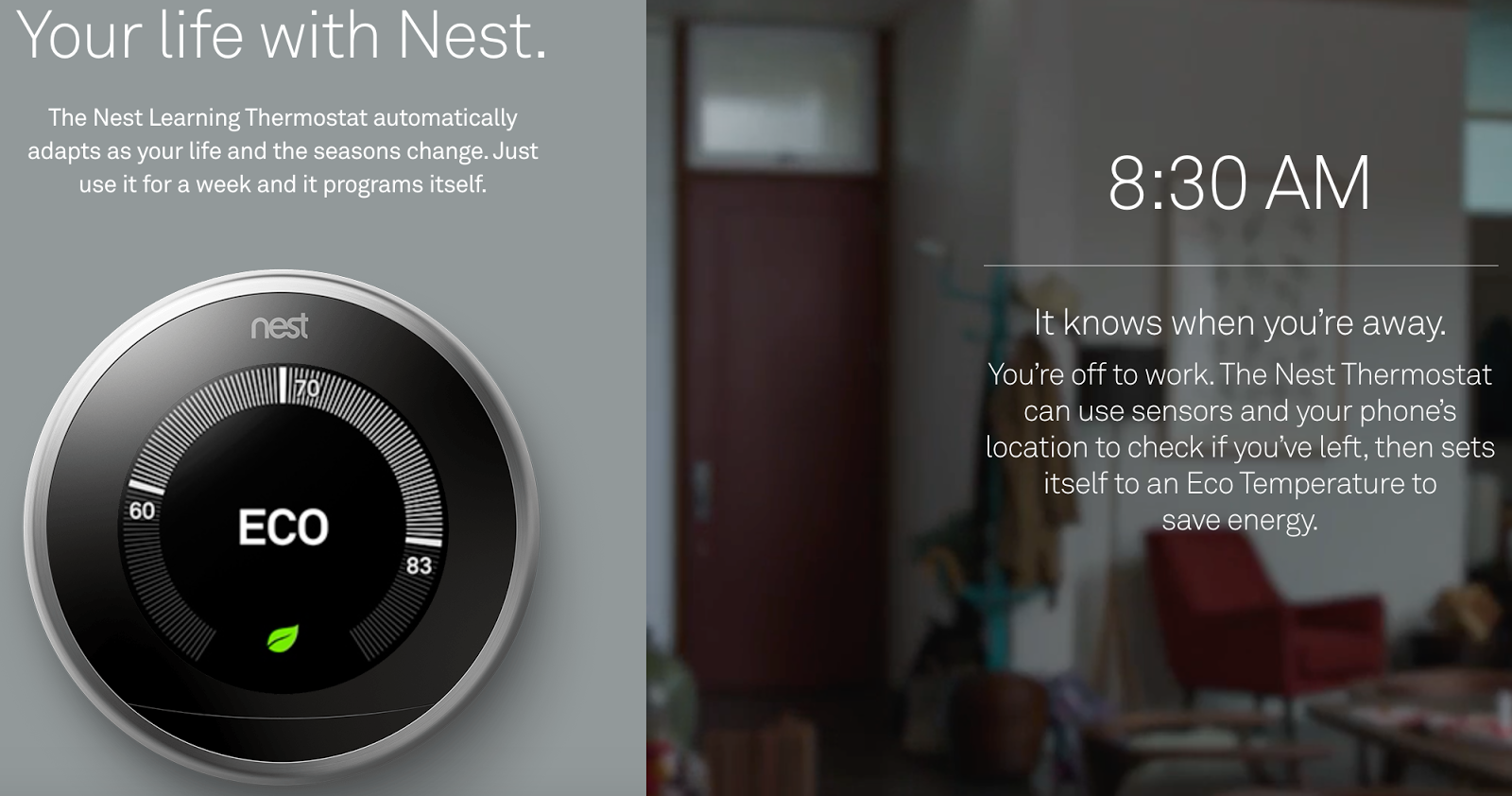 Nest Learning Thermostat screenshot